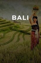 Toko Velg Mobil Bali